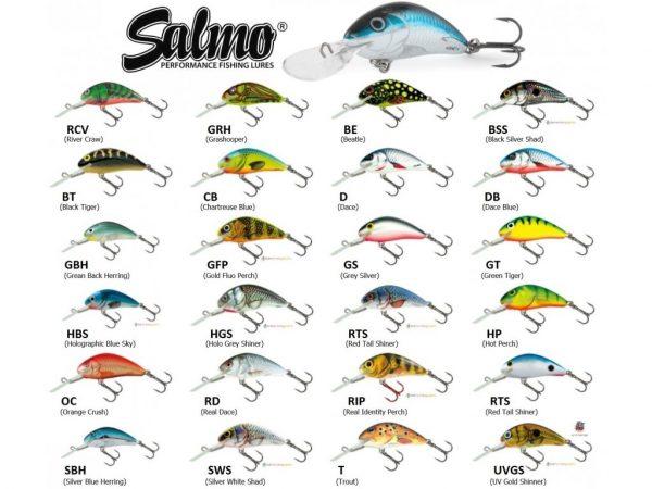 salmo_hornet_4s